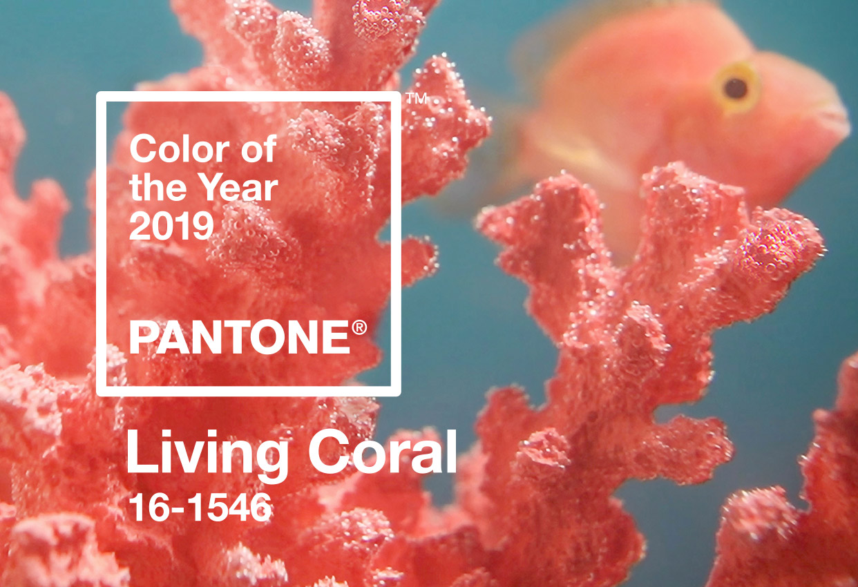Living Coral – 2019 Pantone Colour of the Year